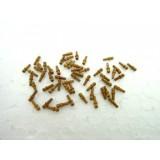 Walnut hollow 6 mm (50 pcs)