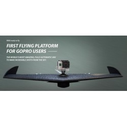 Autonomous Flying Wing Model 500 meters