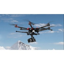 Hexacopter DJI Spreading Wings S900