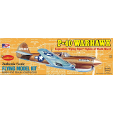 CURTISS P-40 WARHAWK KIT Free Flight Model Airplane (420 mm)