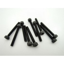 Hex socket screw M2.5 x 20 mm (10 pcs)